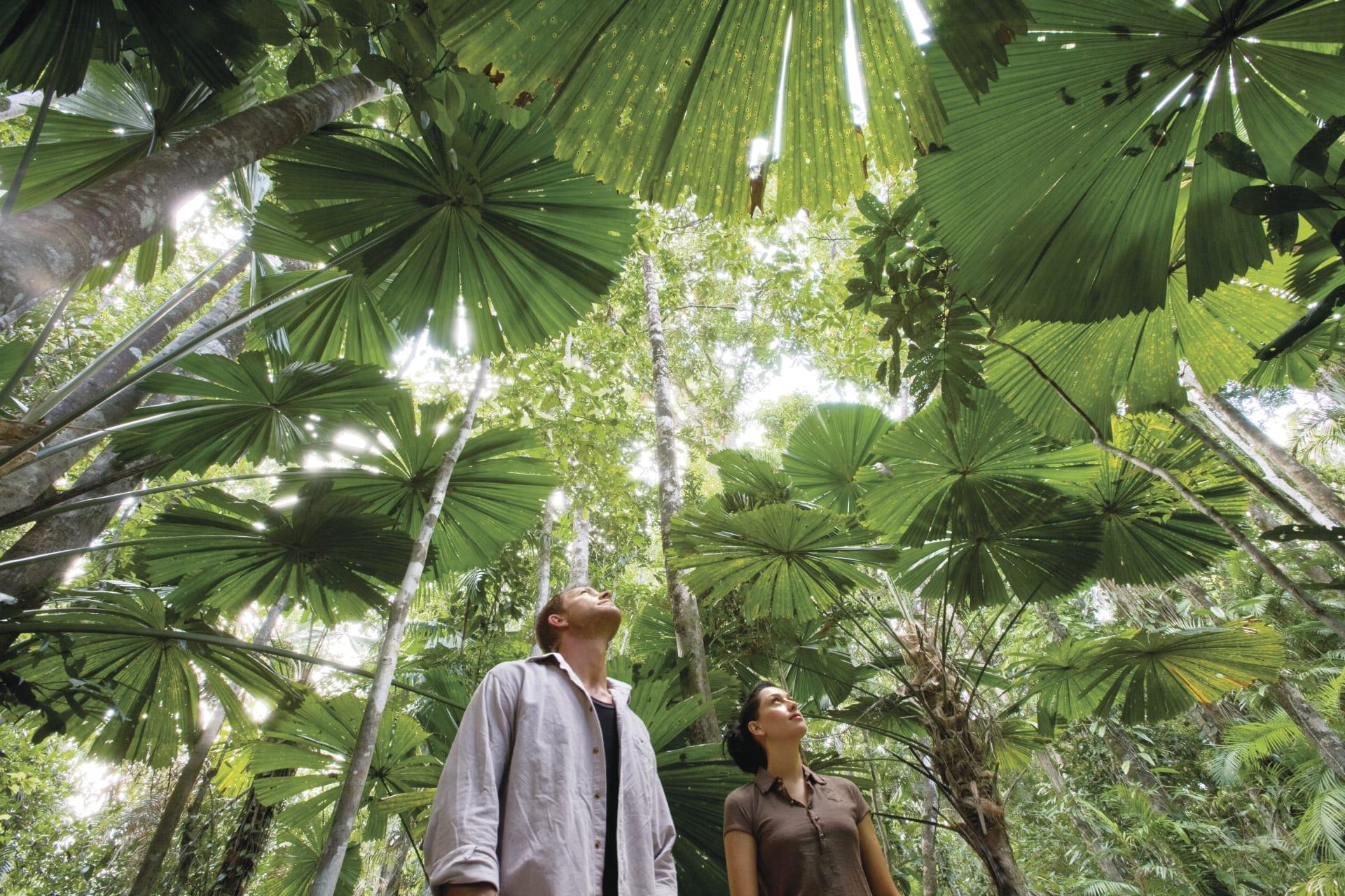 Kennismaking Met Het Tropische Australië Best Of Travel